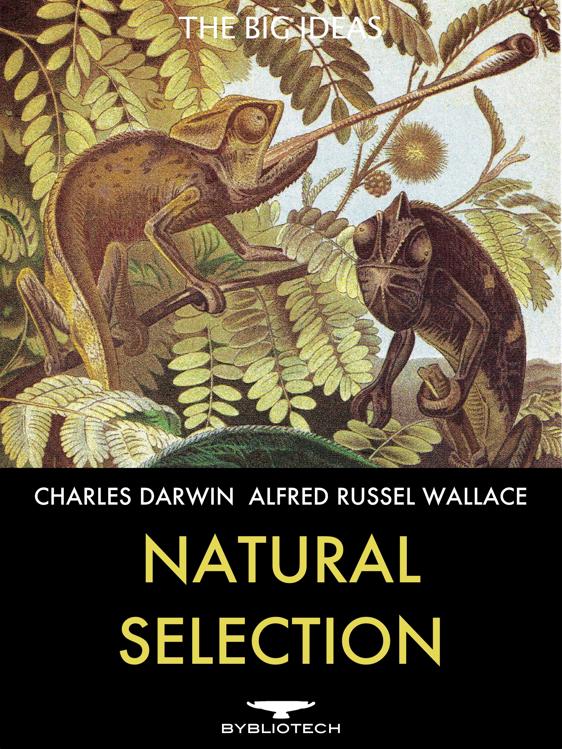 by charles darwin essay natural selection Charles darwin was born on 12  essay editing services  he spent more than twenty years refining his theories on natural selection and evolution over time before.