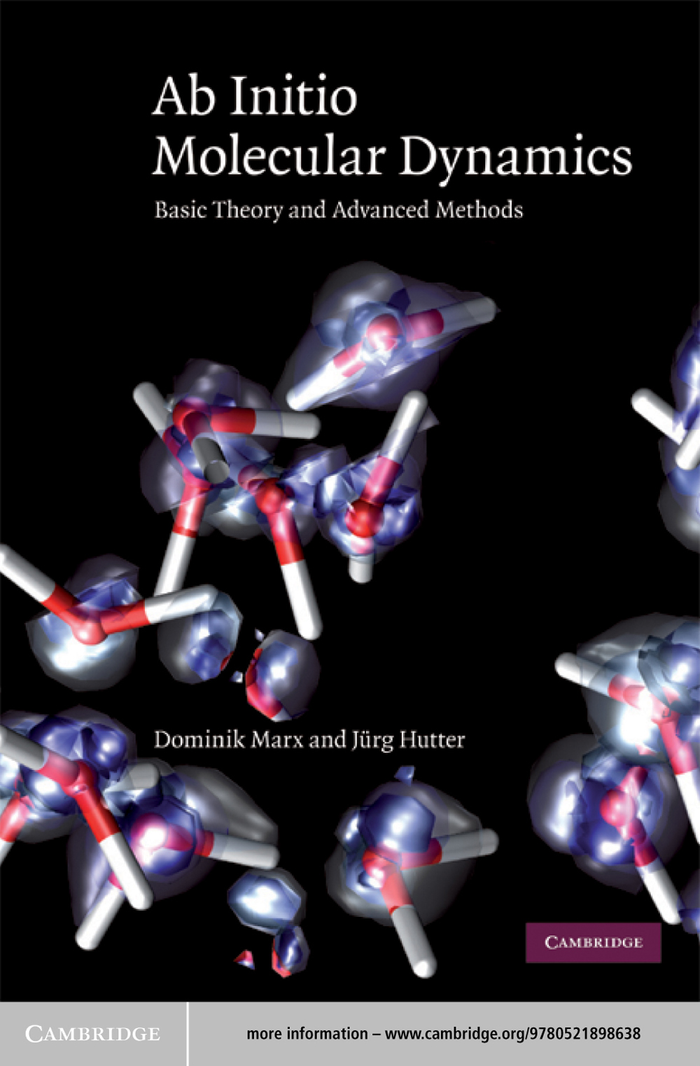 Ab Initio Molecular Dynamics Basic Theory and Advanced Methods