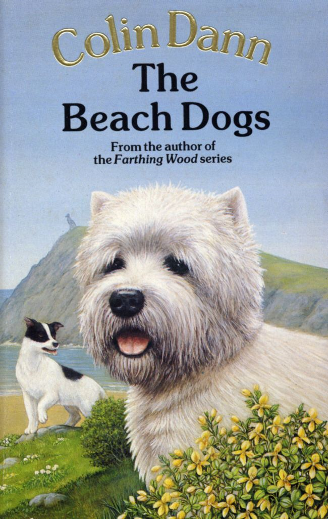 The Beach Dogs By: Colin Dann