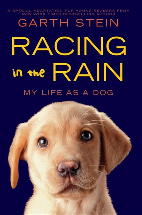 Racing in the Rain By: Garth Stein
