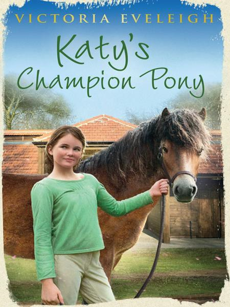 Katy's Champion Pony
