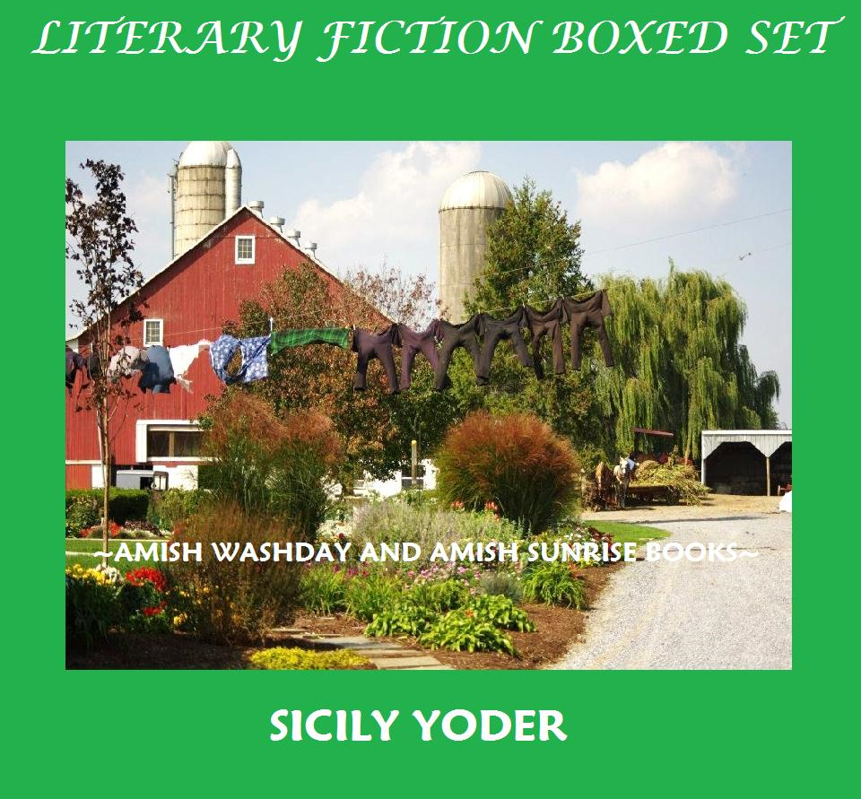 Literary Fiction Boxed Set