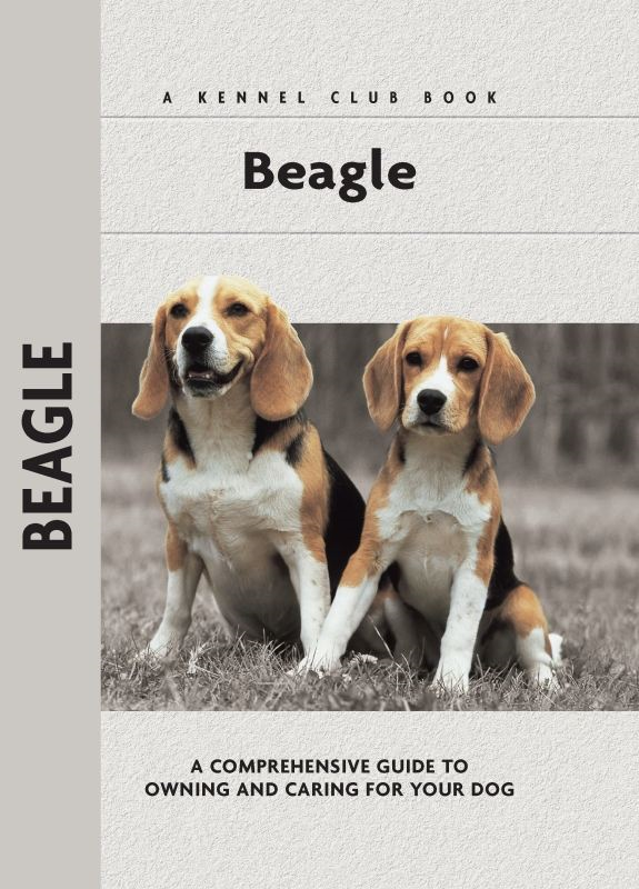 Beagle By: Evelyn Elizabeth Lanyon