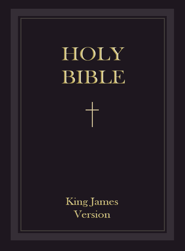 holy bible niv pdf download