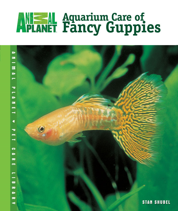 Aquarium Care of Fancy Guppies By: Stan Shubel