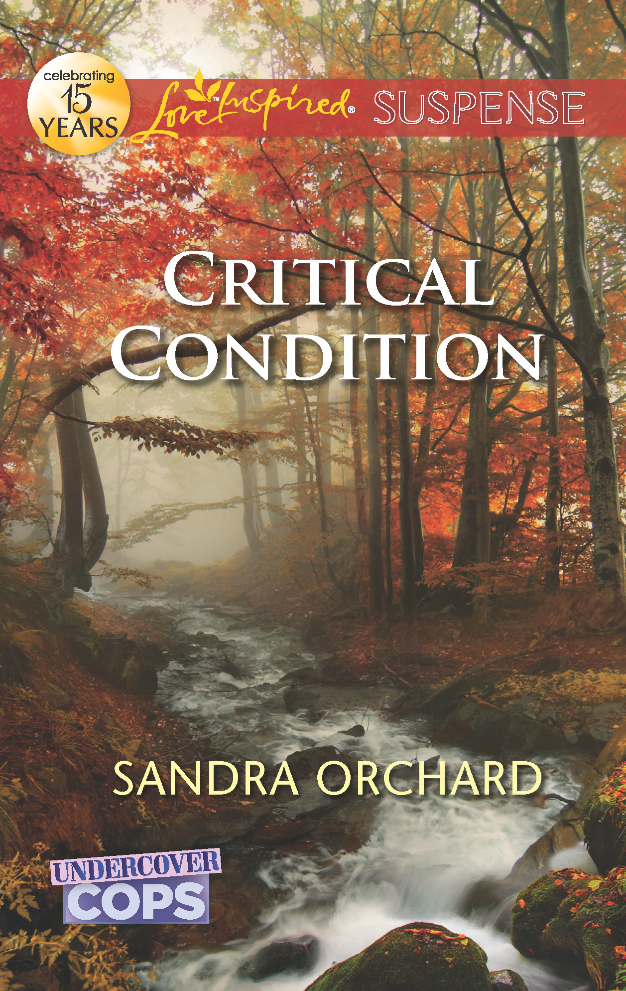 Critical Condition By: Sandra Orchard