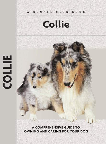Collie By: Samantha Moore
