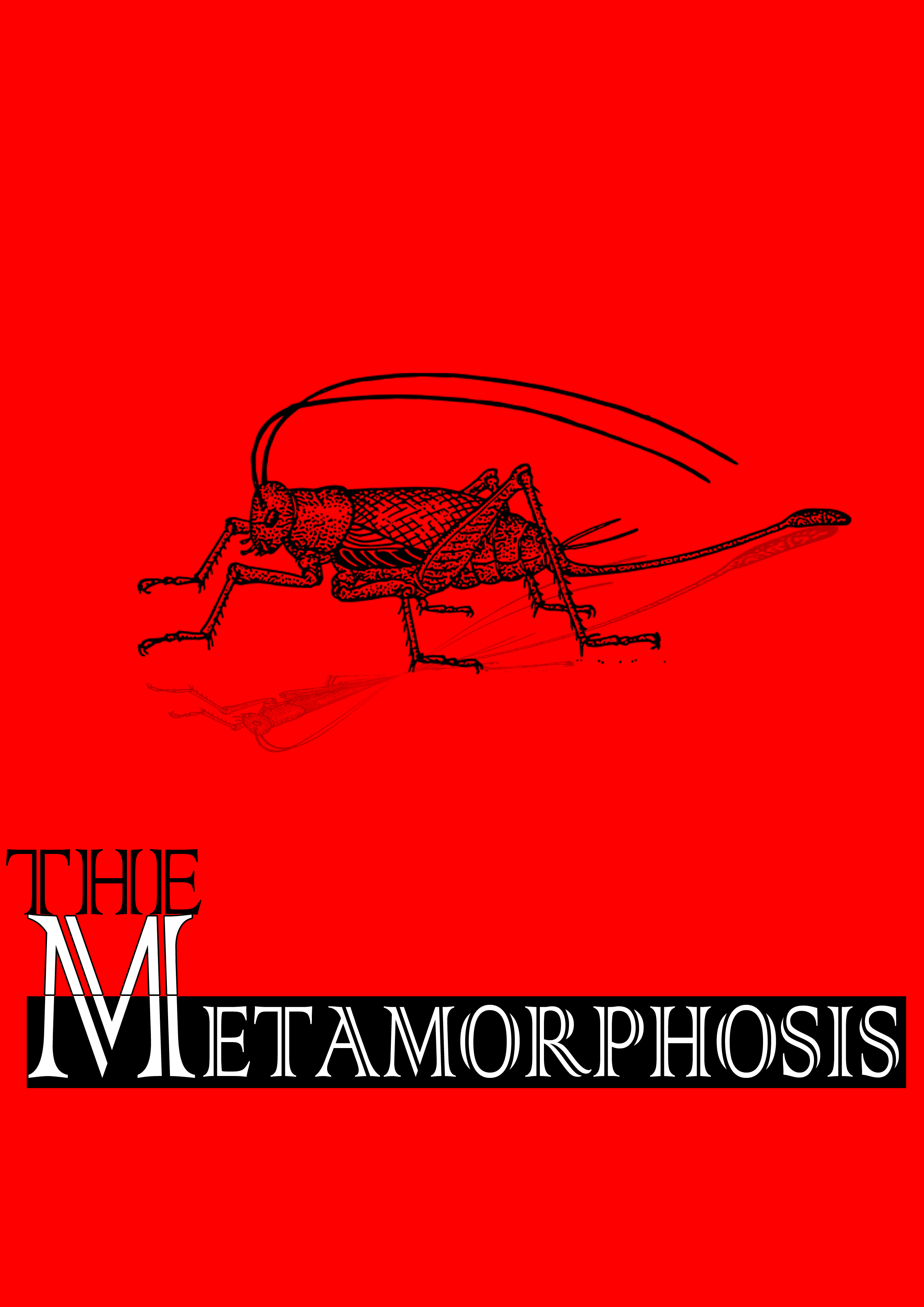 Metamorphosis By: Franz Kafka