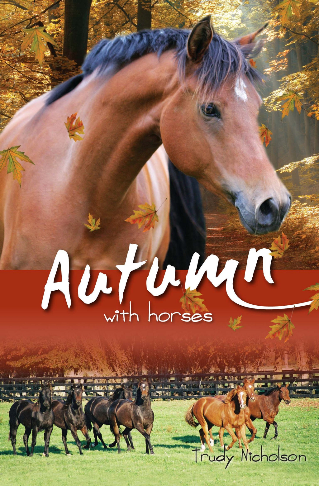 Autumn with Horses Bk6: White Cloud Station