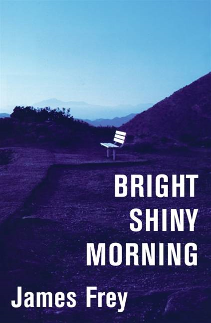Bright Shiny Morning By: James Frey