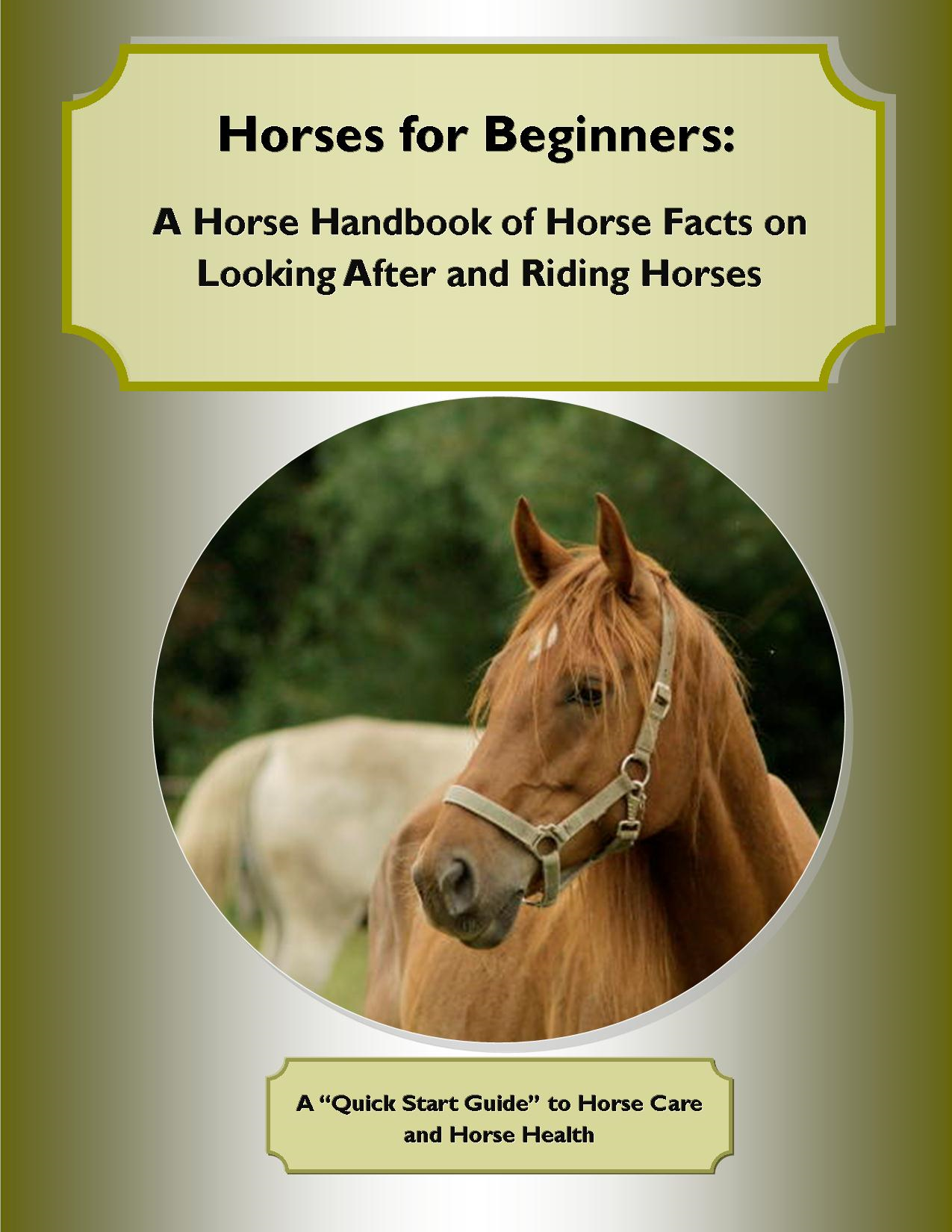 Horses for Beginners: A Horse Handbook of Horse Facts on Looking After and Riding Horses