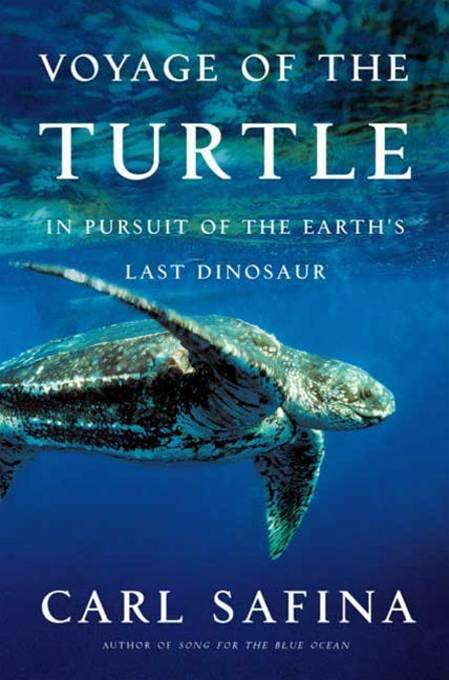 Voyage of the Turtle By: Carl Safina