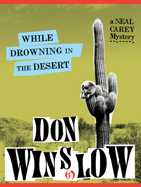 While Drowning in the Desert By: Don Winslow