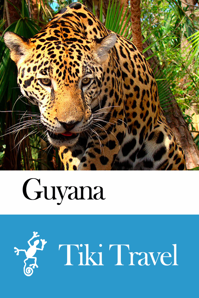 Guyana Travel Guide - Tiki Travel