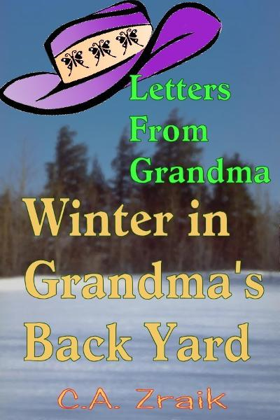 Winter In Grandma's Back Yard