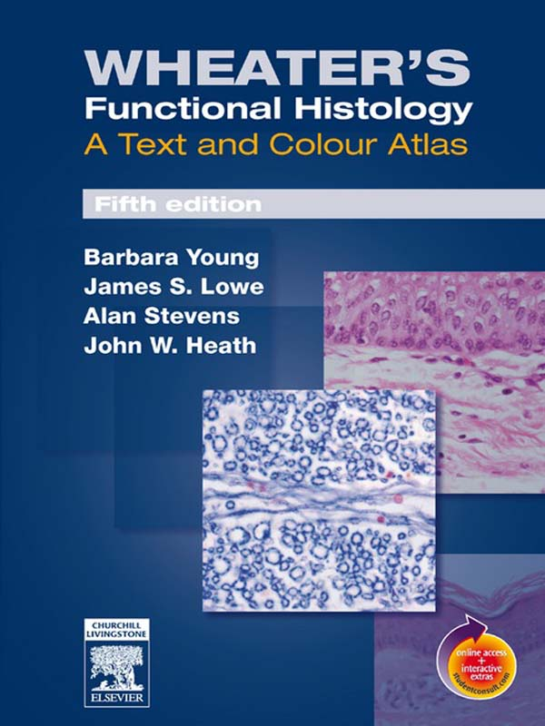 Wheater's Functional Histology By: Alan Stevens,Barbara Young,James S. Lowe,John W. Heath,Philip J. Deakin