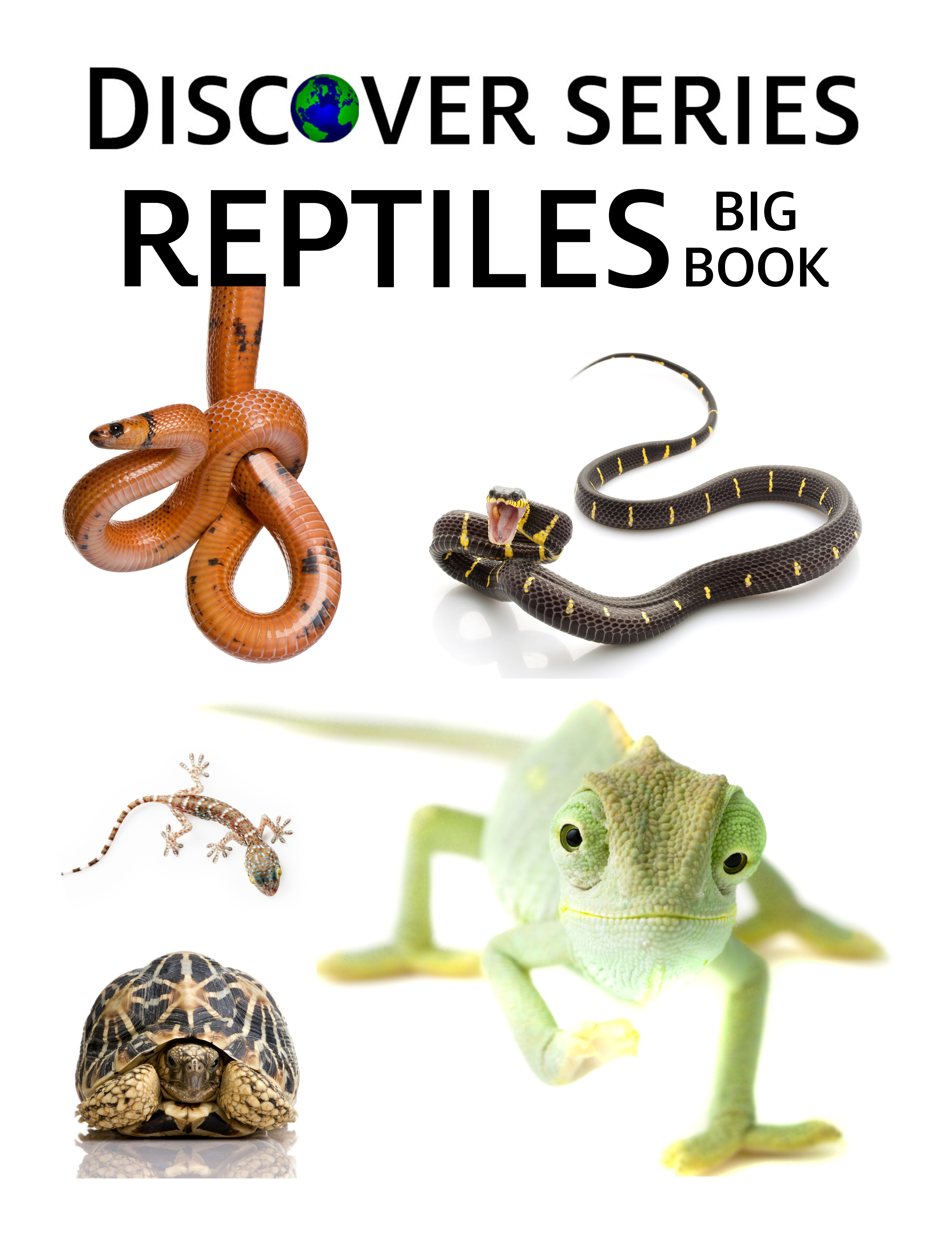 Reptiles Big Book