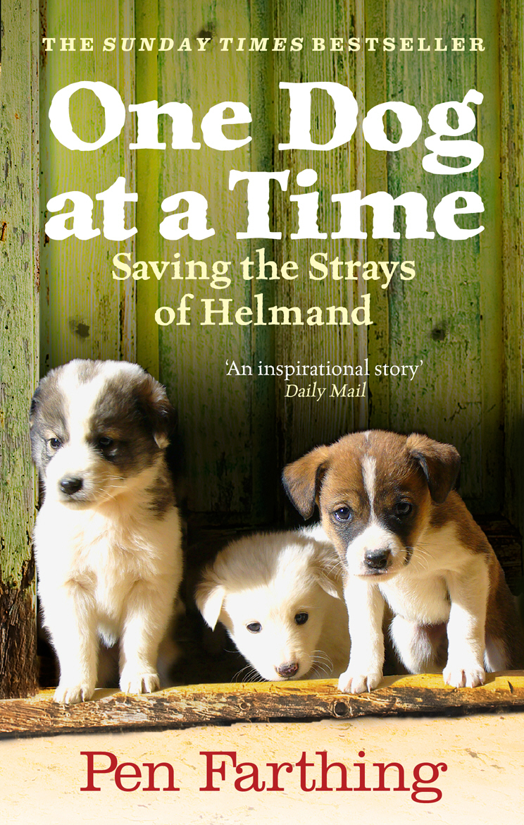 One Dog at a Time Saving the Strays of Helmand - An Inspiring True Story