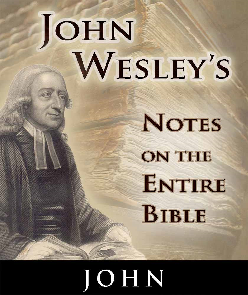 John Wesley's Notes on the Entire Bible-Book of John