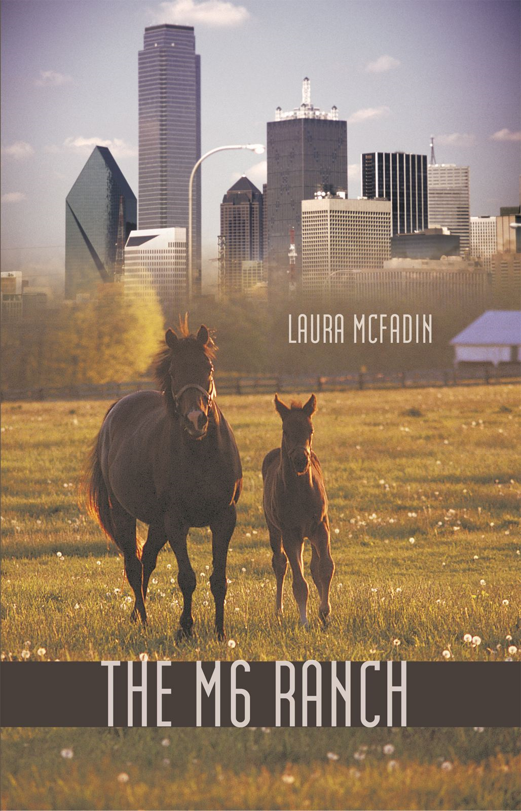 The M 6 Ranch By: Laura McFadin