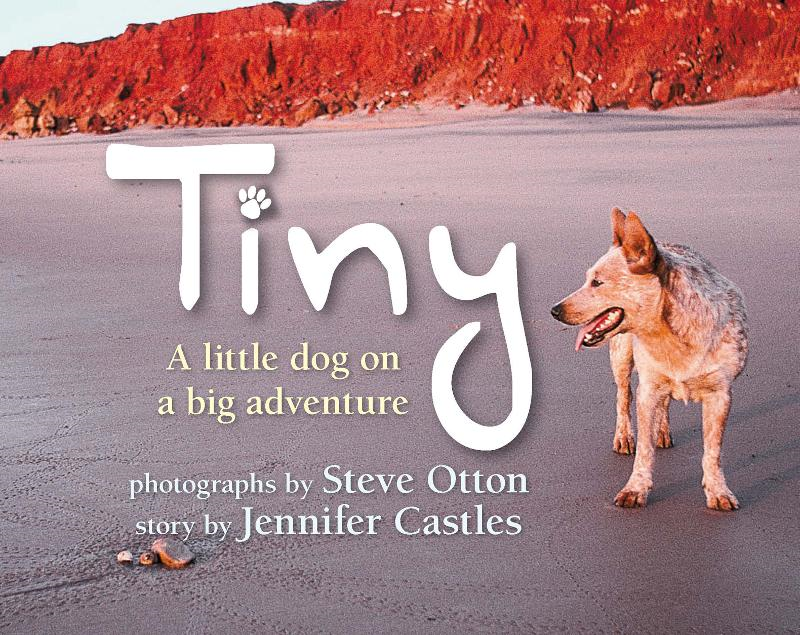 Tiny: A Little Dog on a Big Adventure By: Steve Otton and Jennifer Castles