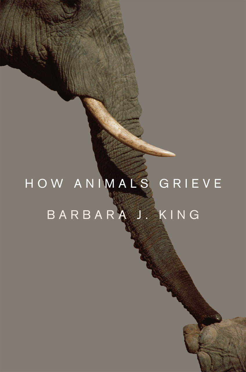 How Animals Grieve By: Barbara J. King
