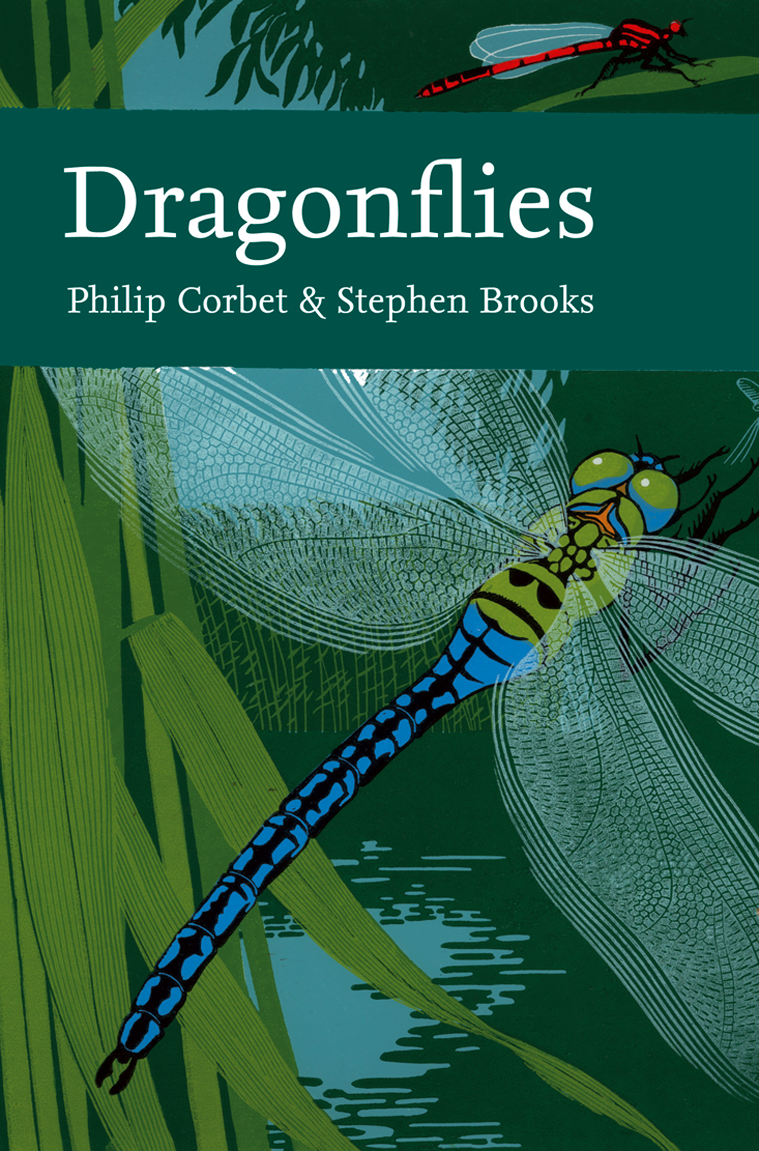 Dragonflies (Collins New Naturalist Library,  Book 106)