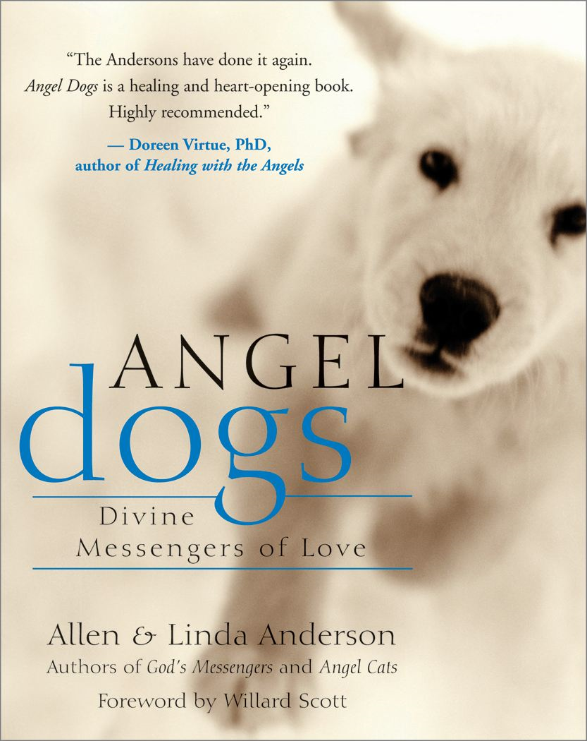 Angel Dogs By: Allen Anderson,Linda Anderson