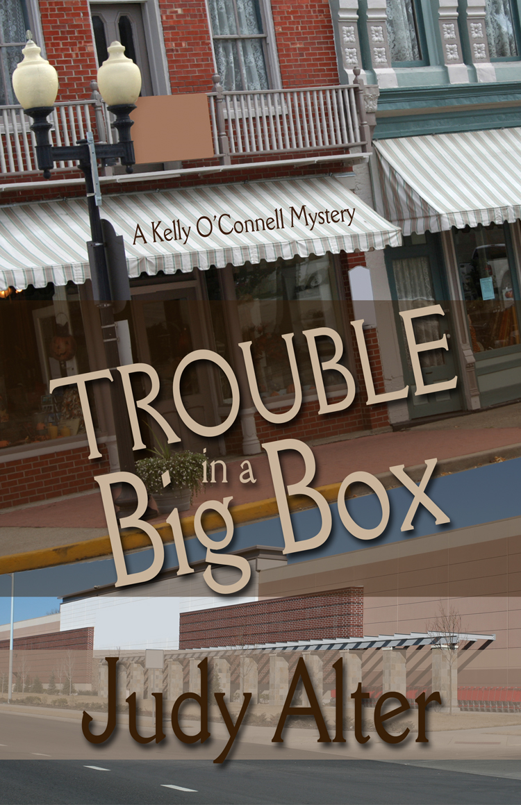 Trouble in a Big Box By: Judy Alter