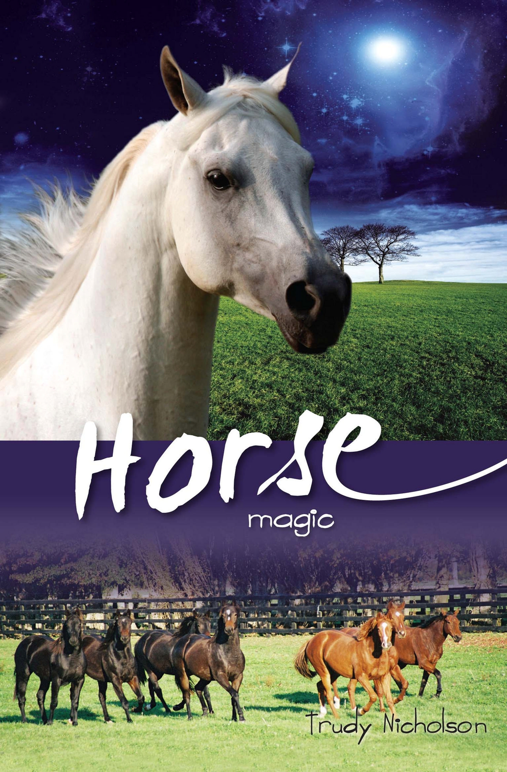 Horse Magic Bk5: White Cloud Station