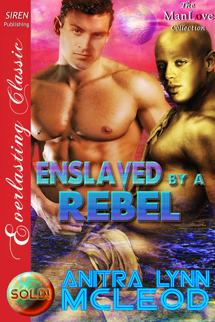 Enslaved by a Rebel By: Anitra Lynn McLeod
