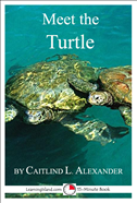 Meet The Turtle: A 15-Minute Book For Early Readers