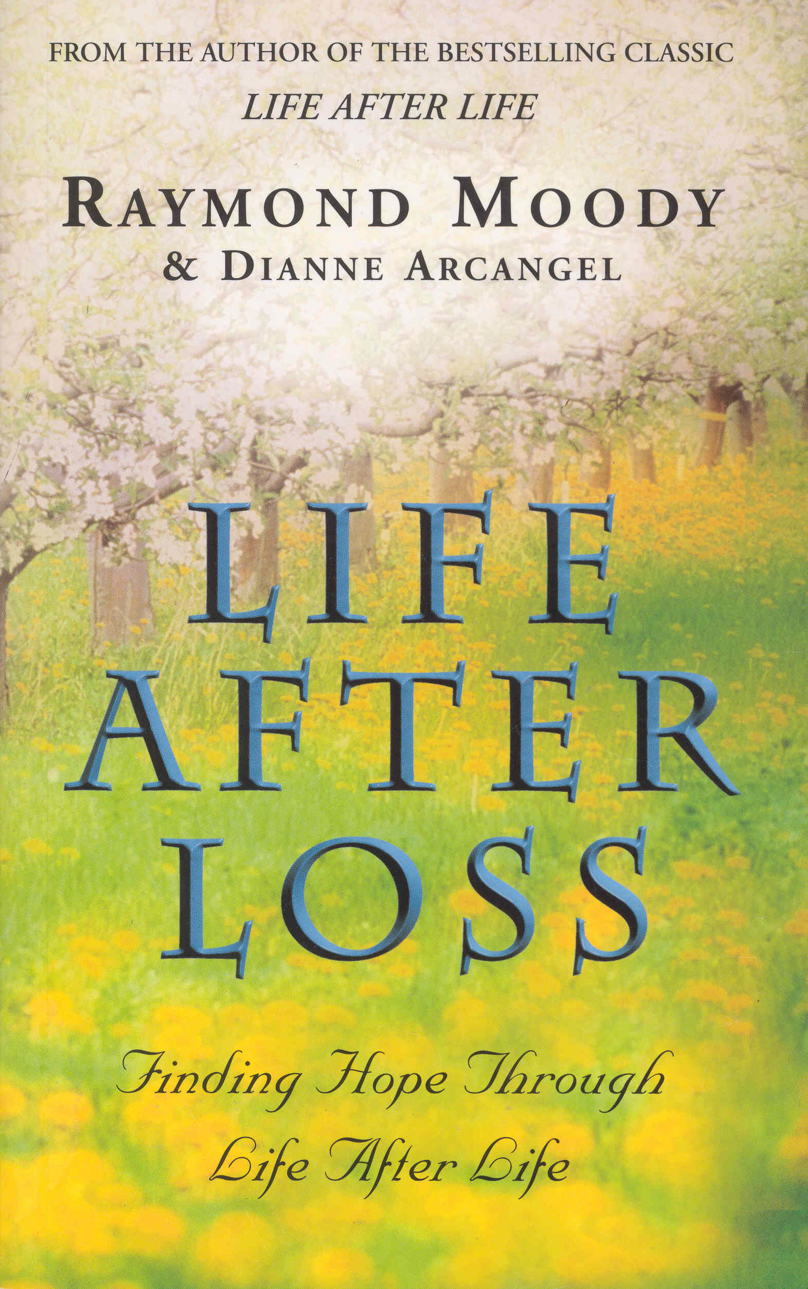 Life After Loss Finding Hope Through Life After Life