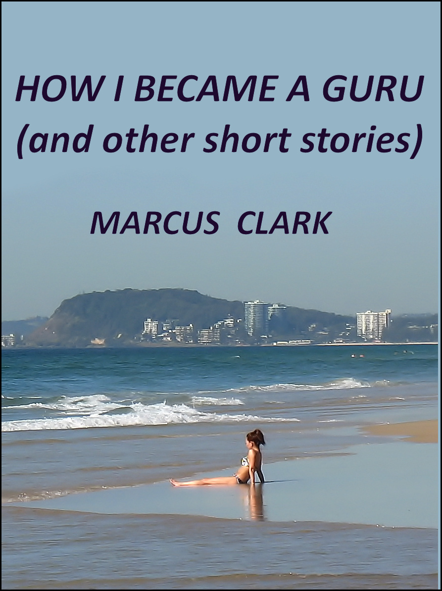 How I Became a Guru
