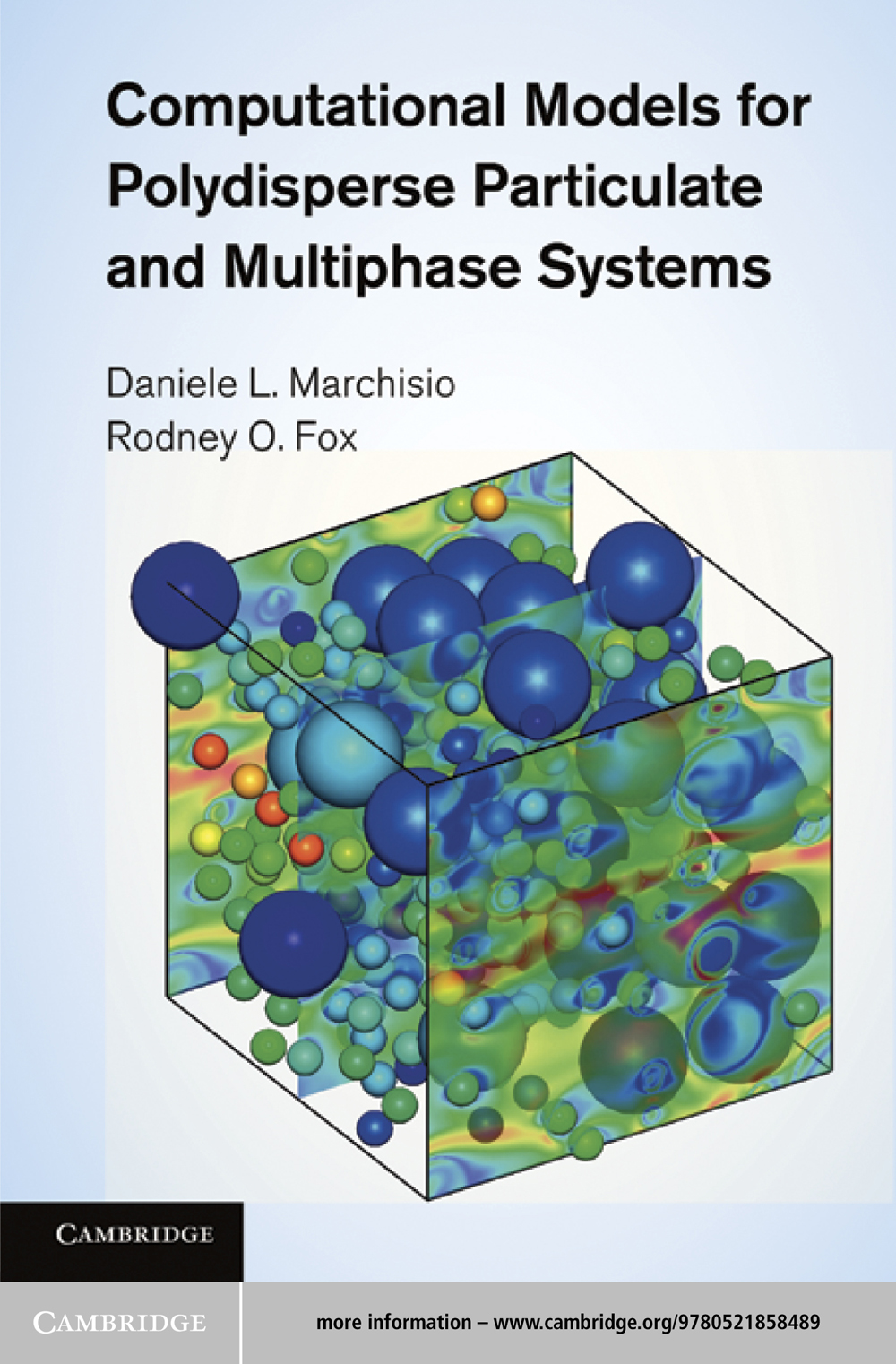 Computational Models for Polydisperse Particulate and Multiphase Systems