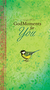 Godmoments For You (ebook)