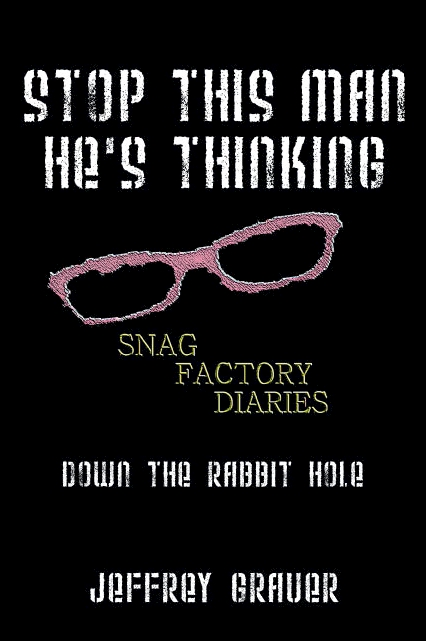 Jeffrey Grauer - Stop This Man He's Thinking The Snag Factory Diaries