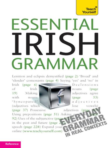 Essential Irish Grammar By: Éamonn Ó Dónaill