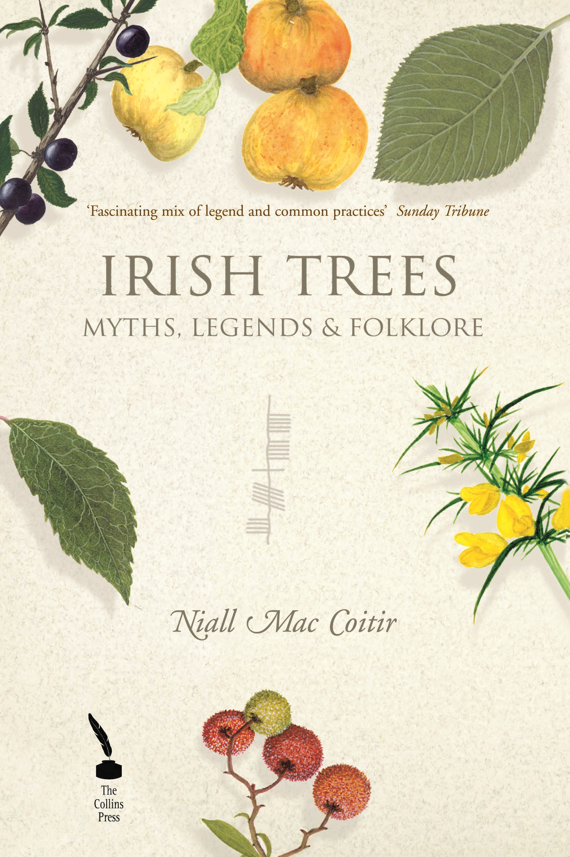 Irish Trees – Myths, Legends & Folklore By: Niall Mac Coitir
