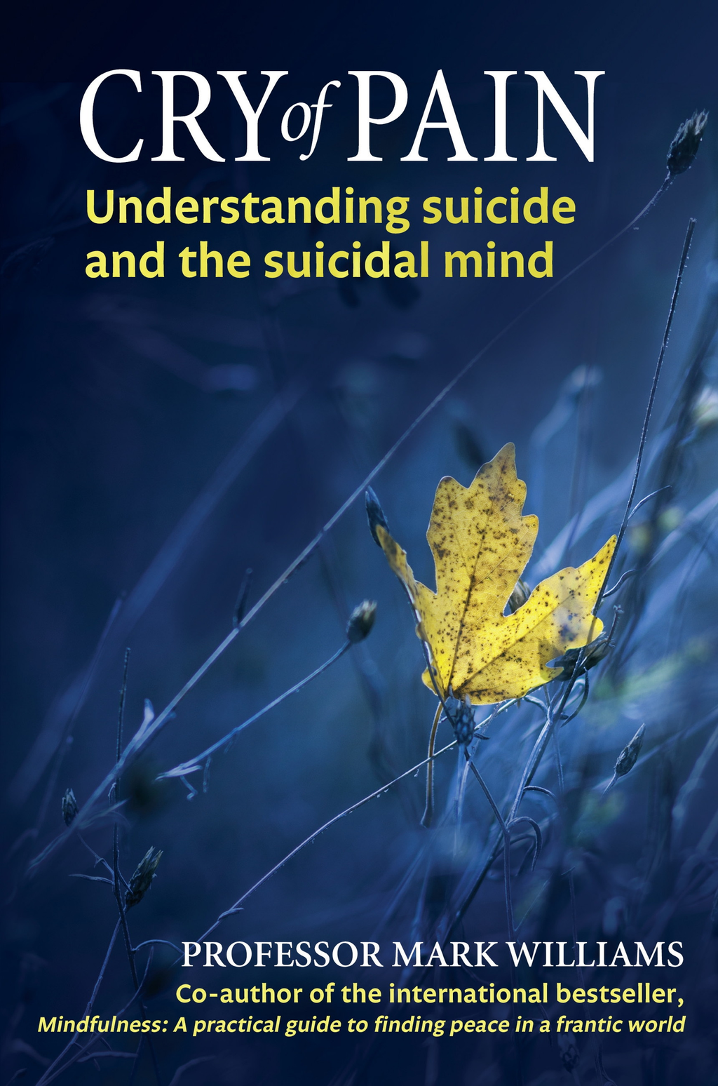 Cry of Pain Understanding Suicide and the Suicidal Mind