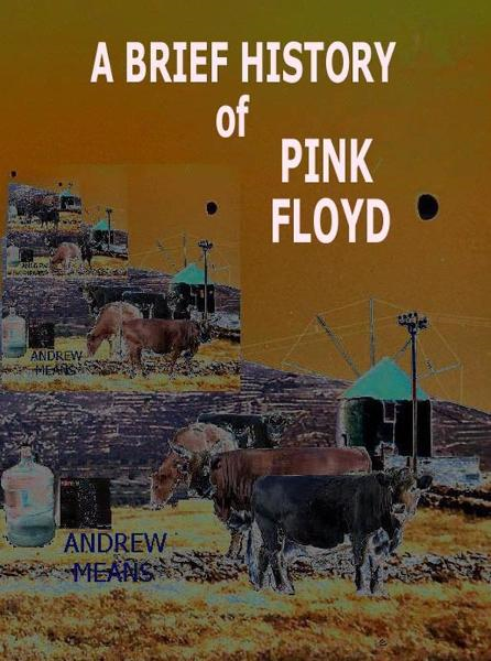 A Brief History Of Pink Floyd By: Andrew Means