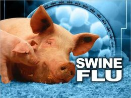 What You Need To Know About Swine Flu: History, Treatment and Prevention