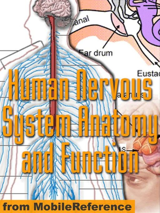 Human Nervous System Anatomy And Function Study Guide  (Mobi Medical) By: MobileReference