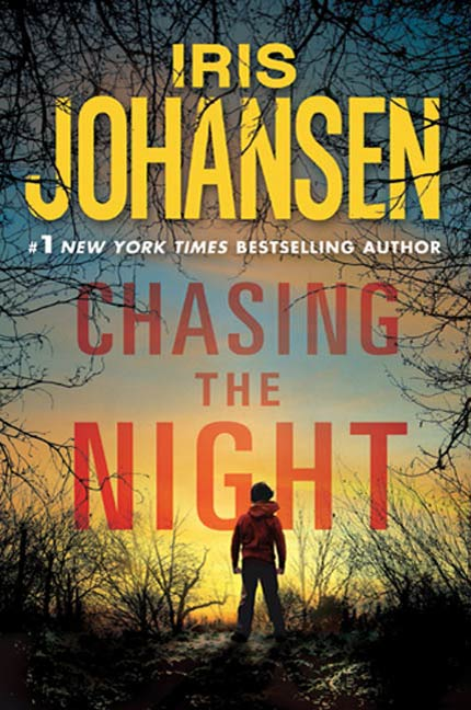 Chasing the Night By: Iris Johansen