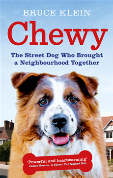 Chewy The Street Dog who Brought a Neighbourhood Together