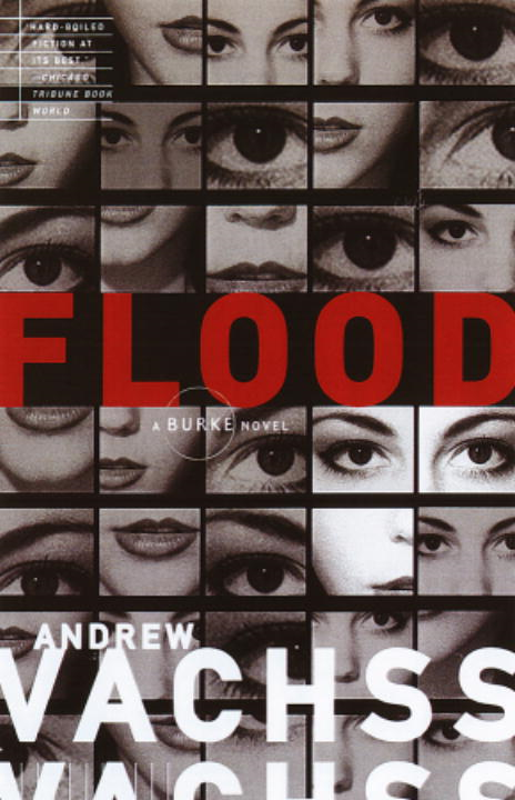 Flood By: Andrew Vachss