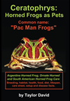 "Ceratophrys: Horned Frogs As Pets: Common Name: ""pac Man Frogs"""