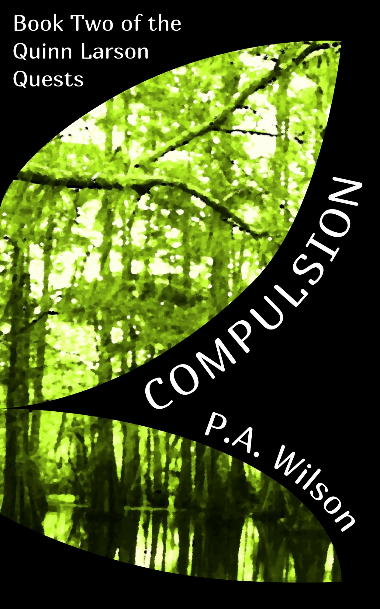 Compulsion, book 2 of the Quinn Larson Quests