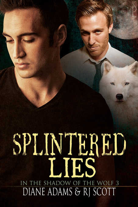 Splintered Lies