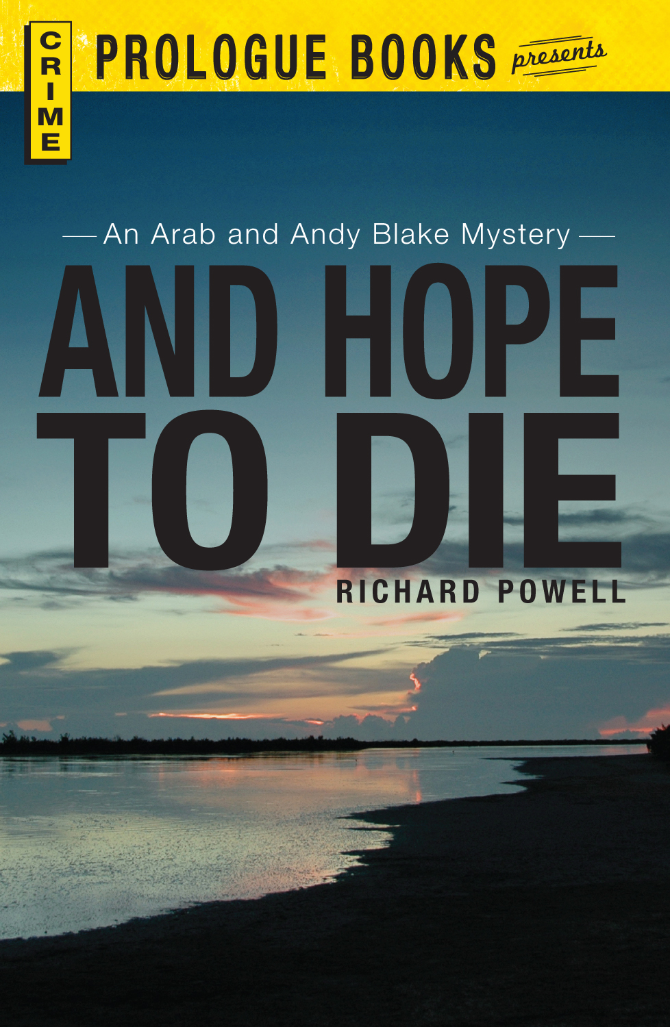 And Hope to Die: An Arab and Andy Blake mystery